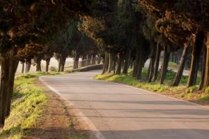 2009.04.08 - Soave (IT) - Treviso (IT)